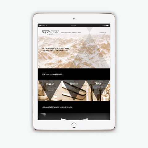 Brand Strategy and Design for Skyview Capital