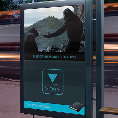 Brand Strategy and Design for Vidity